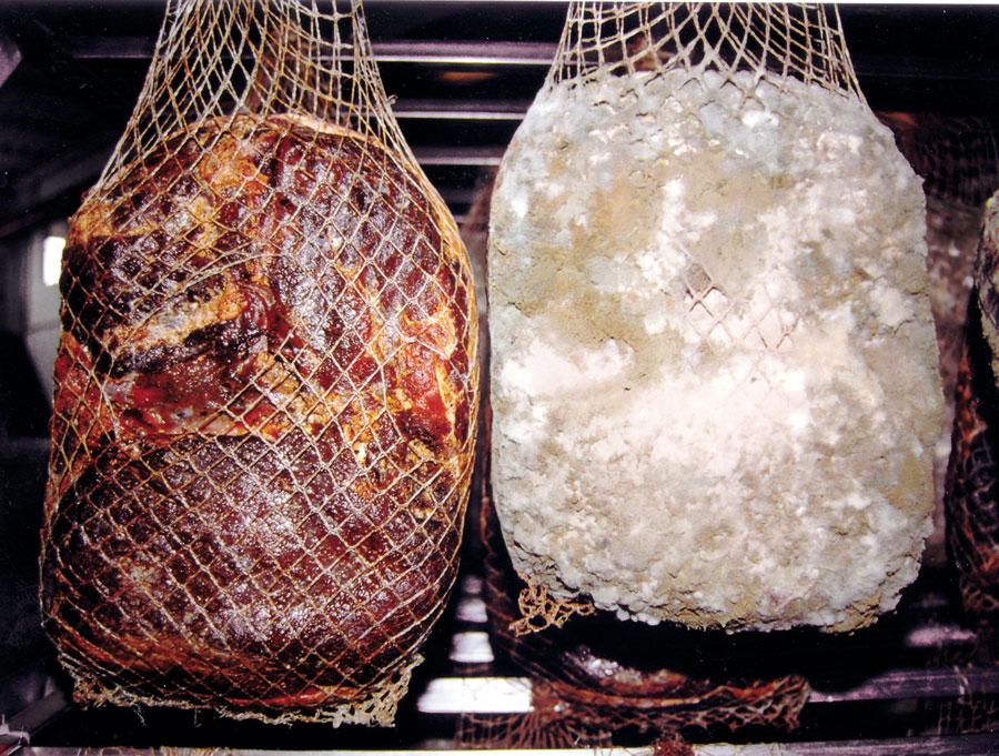 Salamiwasch- und abblasmaschinen - 5 - Colussi Ermes