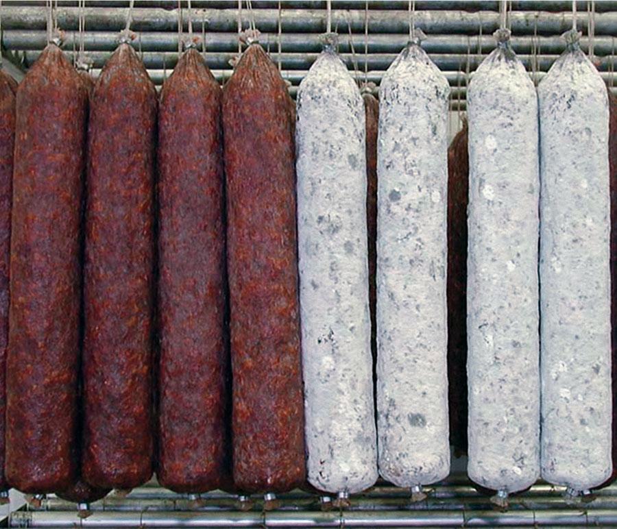 Salamiwasch- und abblasmaschinen - 7 - Colussi Ermes